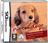 Carátula de Nintendogs: Teckel y Compañía para Nintendo DS