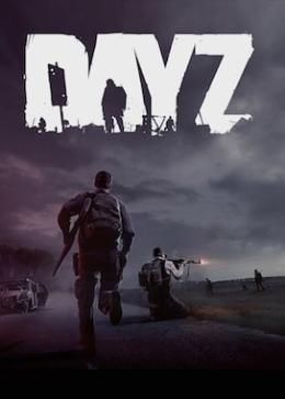 Carátula de DayZ para PC