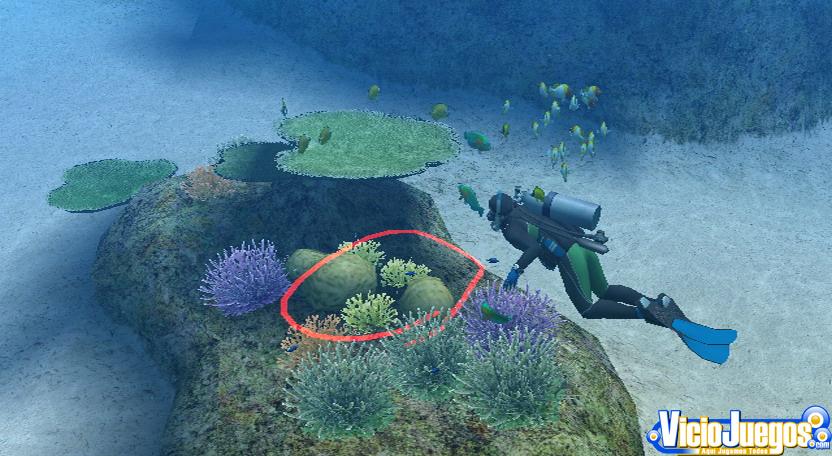 Ecosistema acuatico en dibujo - Imagui