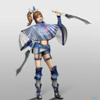 Imagen/captura de Samurai Warriors: Spirit of Sanada para PC