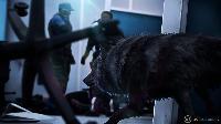 Análisis de Werewolf: The Apocalypse - Earthblood para XONE: Mis garras y mis colmillos son para ti, Gaia