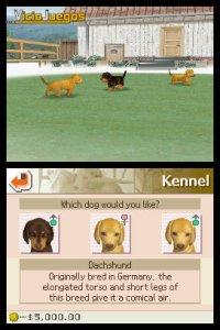 Imagen/captura de Nintendogs: Chihuahua y Compañía para Nintendo DS