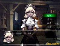 Imagen/captura de Stella Deus: The Gate of Eternity para PlayStation 2